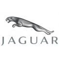 Jaguar GPS (1)