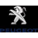 Peugeot GPS (1)